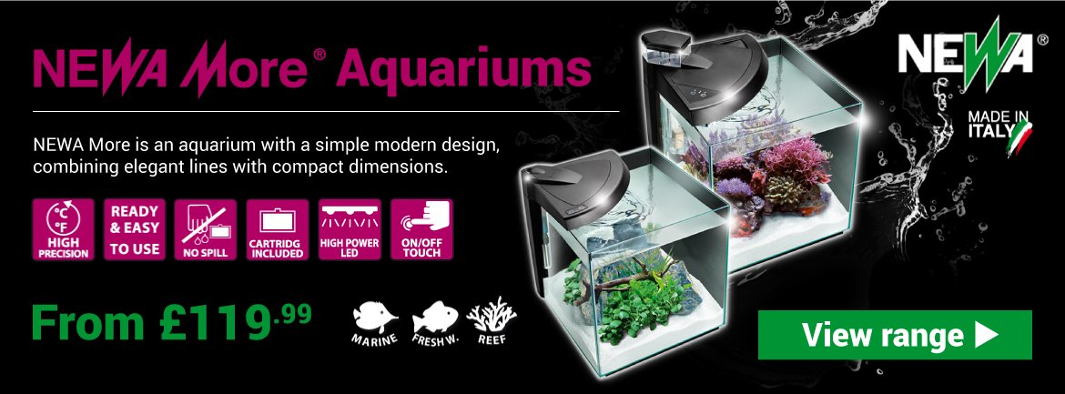 Newa More Aquariums