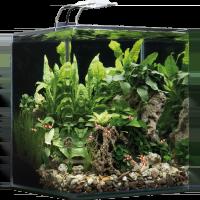 Dennerle Aquariums