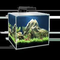Ciano Cube Aquariums