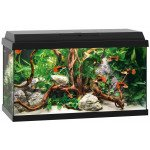Juwel Aquariums Primo 60 black (25362)