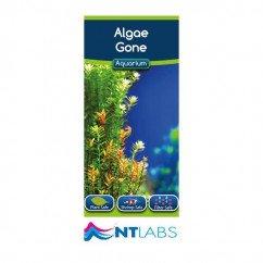 NT Aquarium Algae Gone 100ml