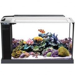 Fluval SEA Evo 52 Litre Aquarium Set Black (10531) - 13.5 US Gal