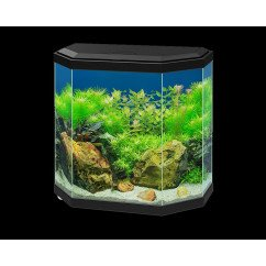 Ciano Aqua Hexa 30 Aquarium (Including Filter & LED Lighting) - Black