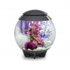 BiOrb Halo 30 Litre Aquarium with Standard LED lighting in Grey or White