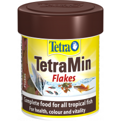 Tetramin Flake Food 13g