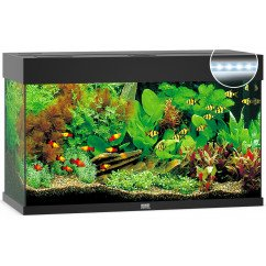 Juwel Aquariums Rio 125 LED black (01352)