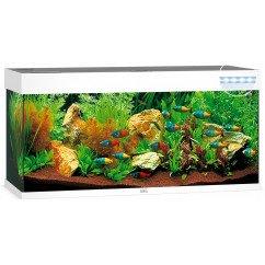Juwel Rio 240 Aquarium - White