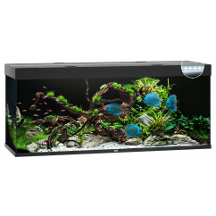 Juwel Rio 450 Aquarium - Black (LED lighting)