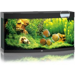 Juwel Vision 260 Aquarium and Cabinet - Black
