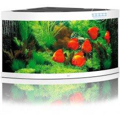 Juwel Aquariums Trigon 350 LED white