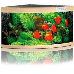 Juwel Trigon 350 Aquarium - Beech