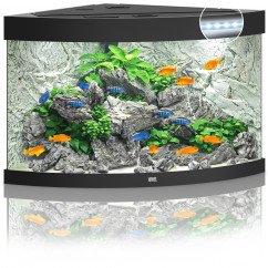Juwel Aquariums Trigon 190 LED black