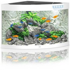 Juwel Aquariums Trigon 190 LED white