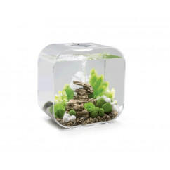 biOrb Life 30 Litre Aquarium with MCR lighting - white, transparent or black