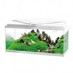 Ciano Aquarium 80 LED - White (Including Filter, Heater & LED Lighting)