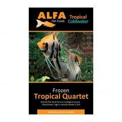 Alfa Gamma Frozen 100g Blister Pack - Tropical Quartet