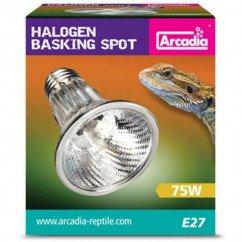 Arcadia Basking Solar Spotlight 2800K 75w