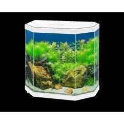 Ciano Aqua Hexa 30 Aquarium (Including Filter & LED Lighting) - White