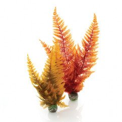 biOrb Easy Plants Autumn Fern 2 Pack
