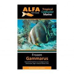 Alfa Gamma Frozen 100g Blister Pack - Gammarus