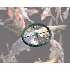 Nishikoi Feeding Ring