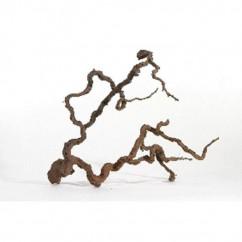 Wine Wood L 80cm-100cm (H031) *terrarium use*