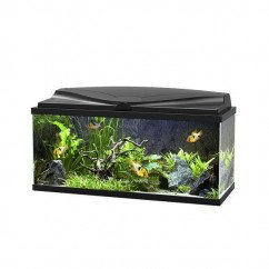 Ciano Aquarium 80 LED - Black (Including CF80 Filter, Heater & LED Lighting)
