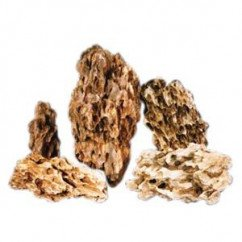 Brown Holey Dragon Rock per kg