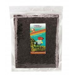 Ocean Nutrition Seaweed Brown Marine Algae Pack of 50 (1025017)
