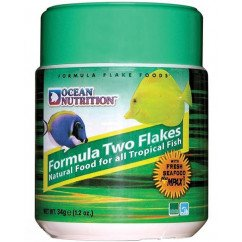Ocean Nutrition Formula Two Flake Food 156g