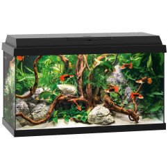 Juwel Aquariums Primo 60 black