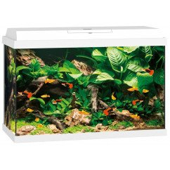 Juwel Aquariums Primo 70 white