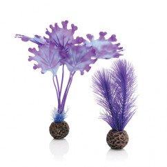 biOrb Purple Kelp Plants Small