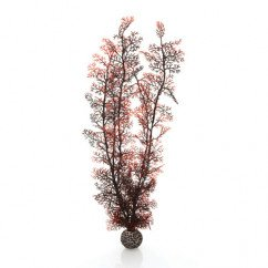 biOrb Extra Large Crimson Sea Fan
