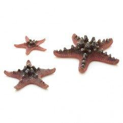 biOrb Pink Sea Stars