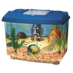 Sponge Bob Square Pants Aquarium Kit