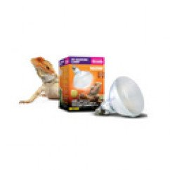 Arcadia D3 UV Basking Lamp 100W For Reptile Development