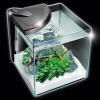 Newa More 30 - 28 Litre Aquarium - Black 1