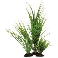 Hugo Kamishi Variegated Rush Grass 13cm