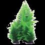 Hugo Kamishi Broad Leaf Fern Green Aquarium Plant 30cm